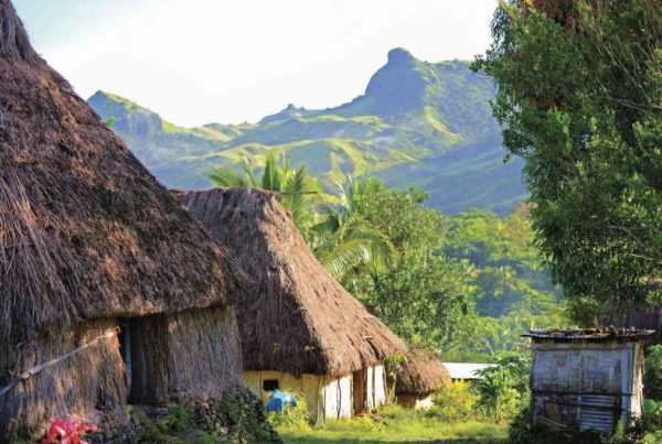 things to do suncoast fiji