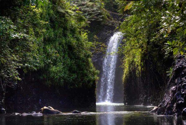 things to do taveuni