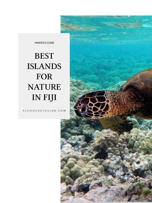 The Best Islands for Nature in Fiji: Mamanuca & Yasawa Islands