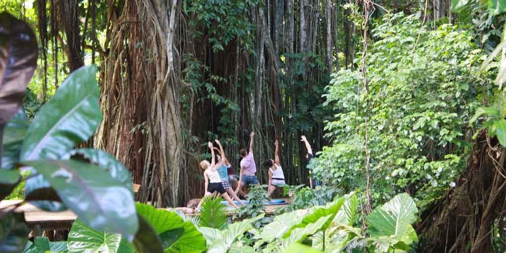 Yoga-in-fiji-resorts