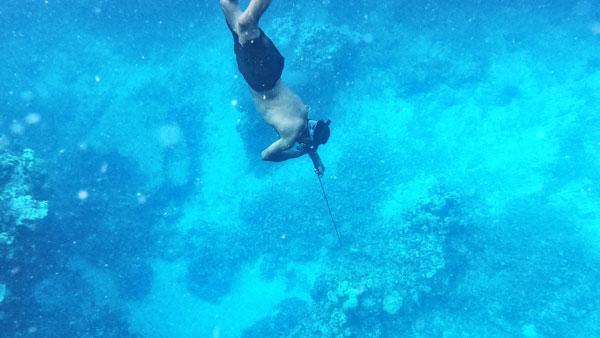 5 Best Spearfishing Resorts in Fiji