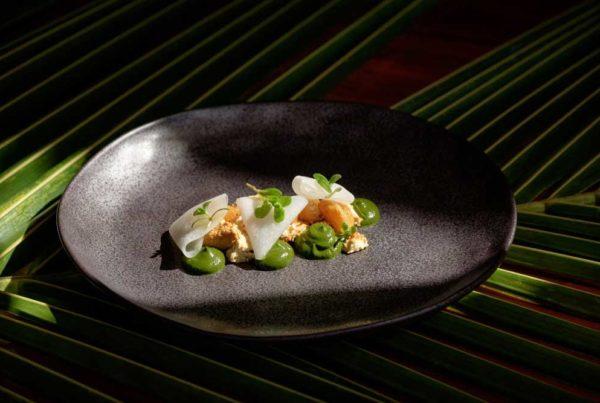 -vegetarian-restaurants-in-the-mamanuca-islands-fiji