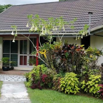 5 Best Homestays on the Pacific Harbour