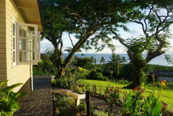 -suva-homestays