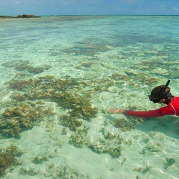 10 Free & Cheap Things to Do on the Coral Coast