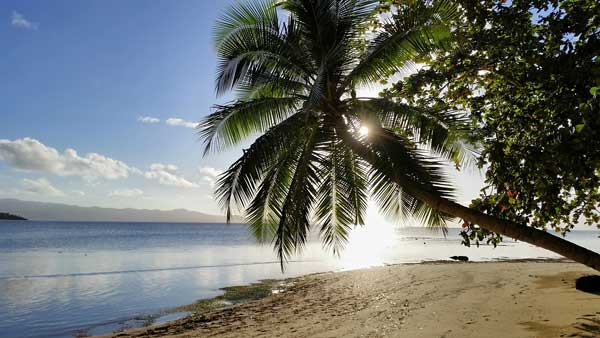 The Guide to the Coral Coast on a Budget