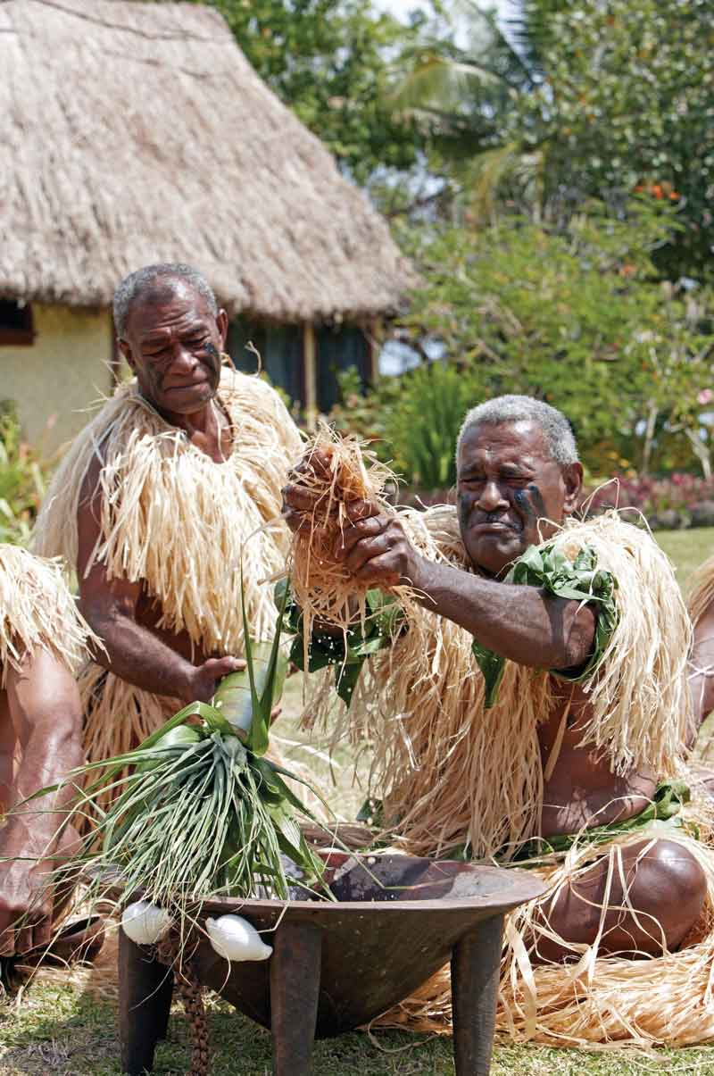 food-activities-suncoast-fiji