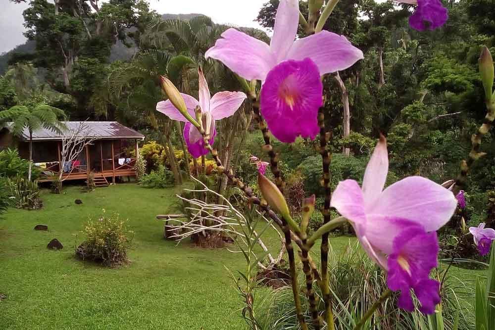 -lomaiviti-islands-budget resorts