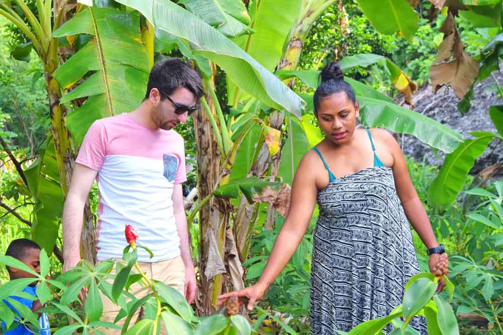 food-activities-on-taveuni
