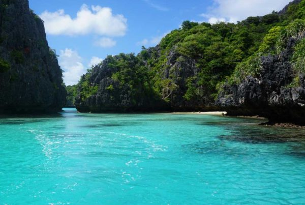 luxury-guide-to-the-lau-islands-Credit-Captain-Cook-Cruises