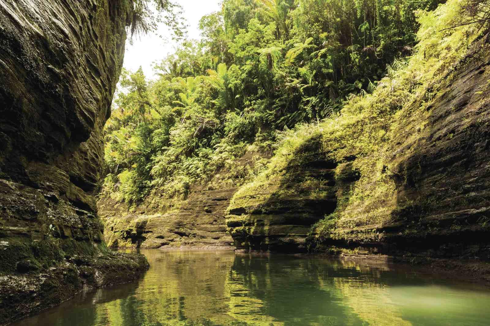 © Aaron March Tourism Fiji