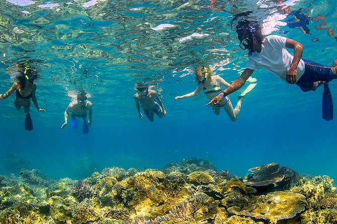 The Best Multi-Day Bus Tours of Fiji