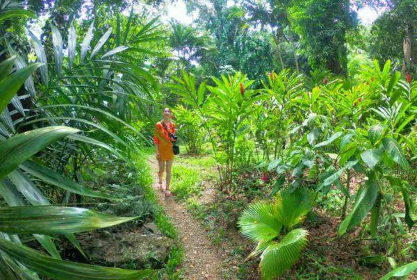 8 Best Walks on Kadavu