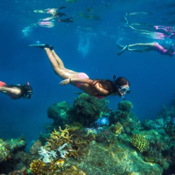 10 Must-Do Tours in Fiji