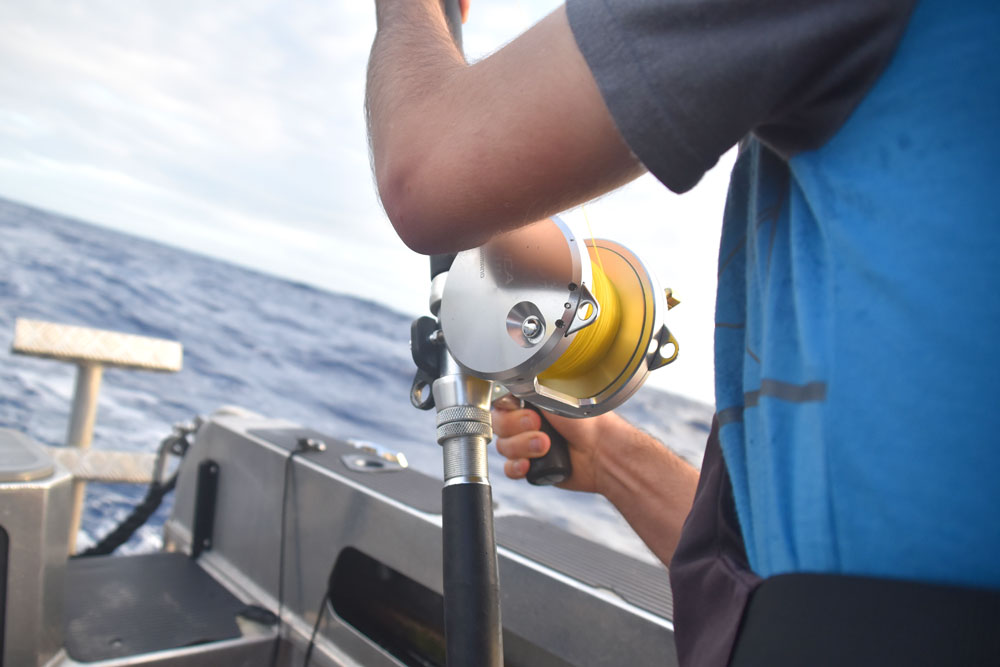 Reel Fishing Rod In Action Close Up Mandatory Credit To NiuePocketGuide.com