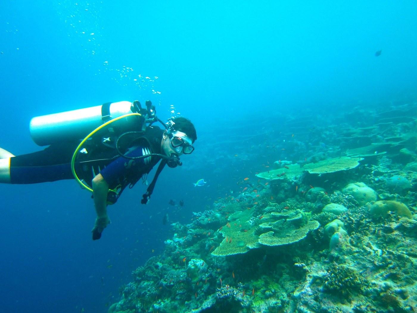 fiji diving scuba dive