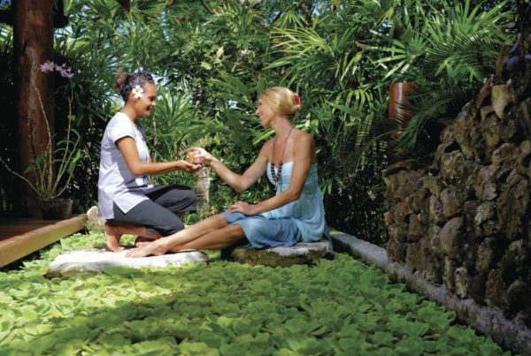 The Guide to Wellness Retreats in Fiji