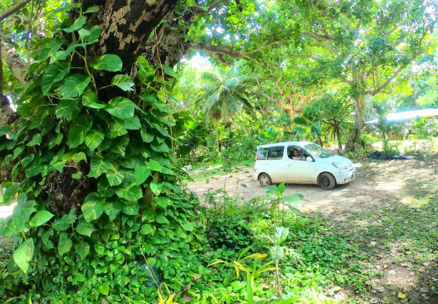 9 Ways to Save Money on Car Rental in Fiji
