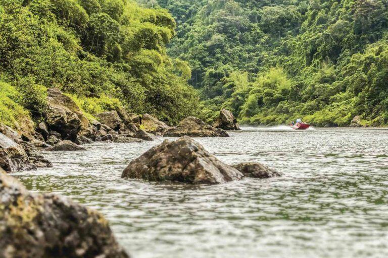 The Best Jet Boat Tours in Fiji
