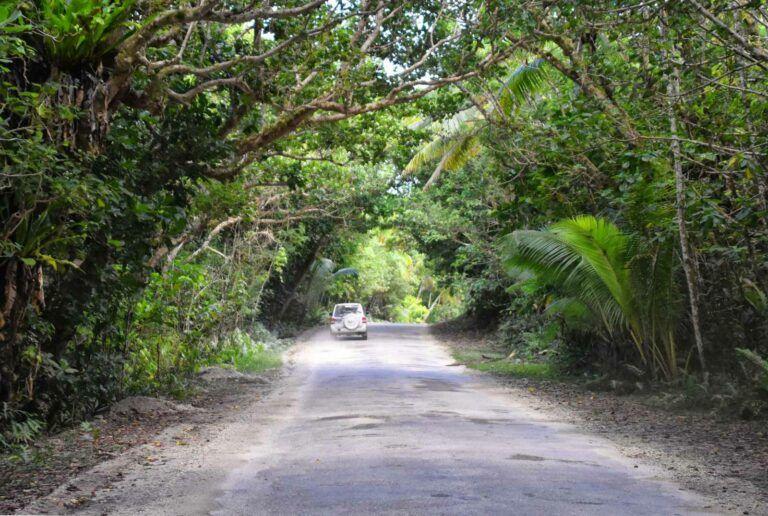 The Best Car Rentals on Vanua Levu