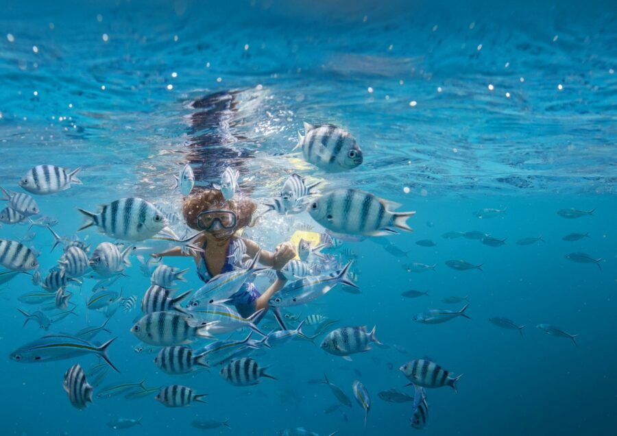 The Ultimate Guide to Snorkelling in Fiji